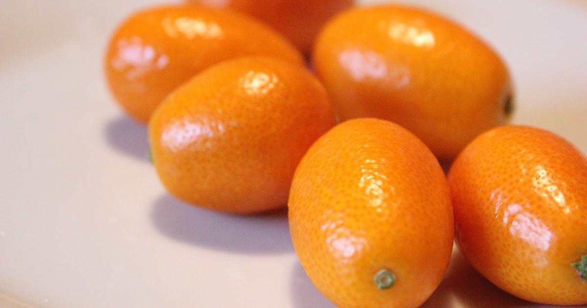 Кумкват  родственник апельсина  MoiKompasru