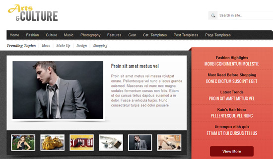 arts and culture best wp theme 2013