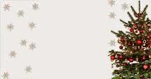 Wer hat den schönsten Tannenbaum?