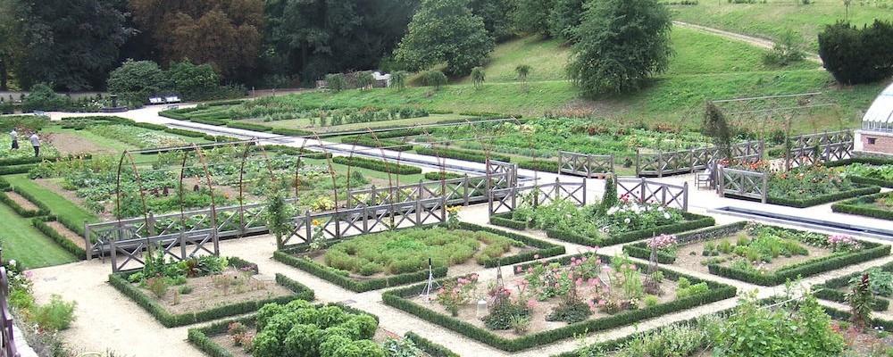 Breuillet nature le potager du ch teau colbert for Creation jardin potager