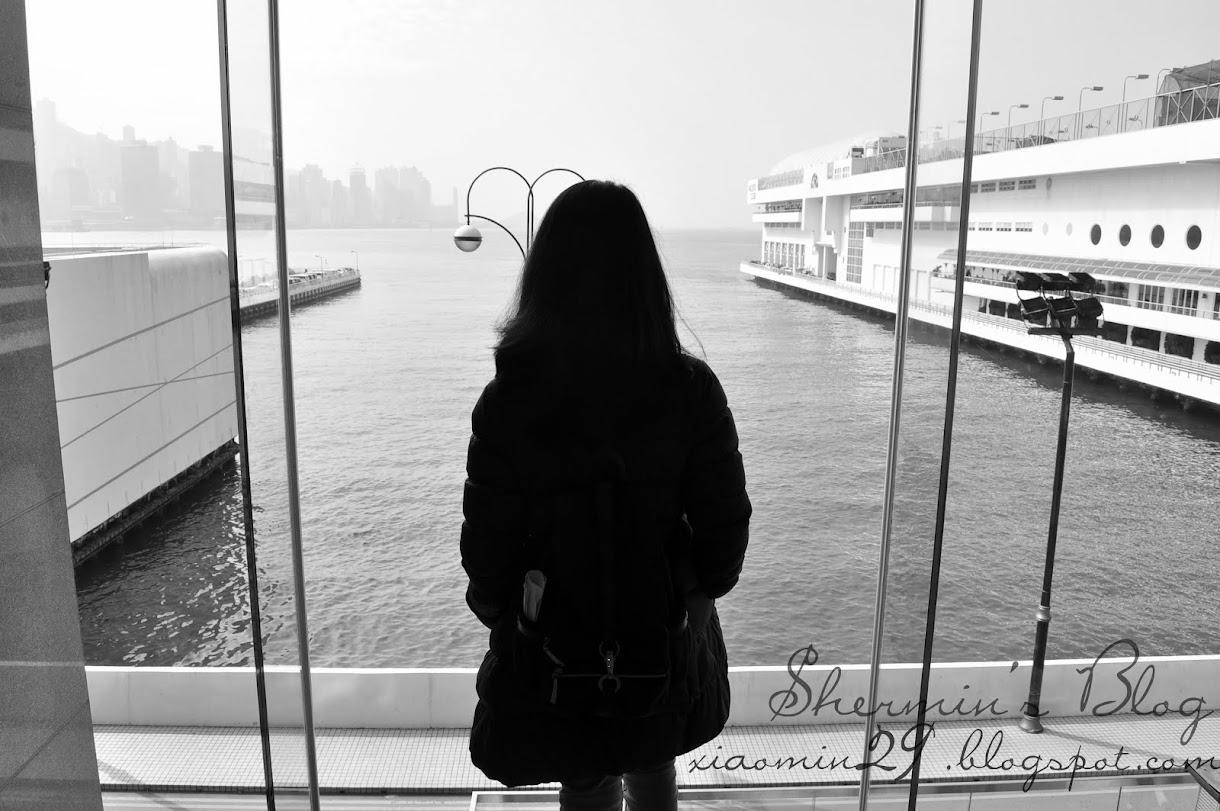 Shermin's Blog