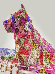 pupi el el perro florido
