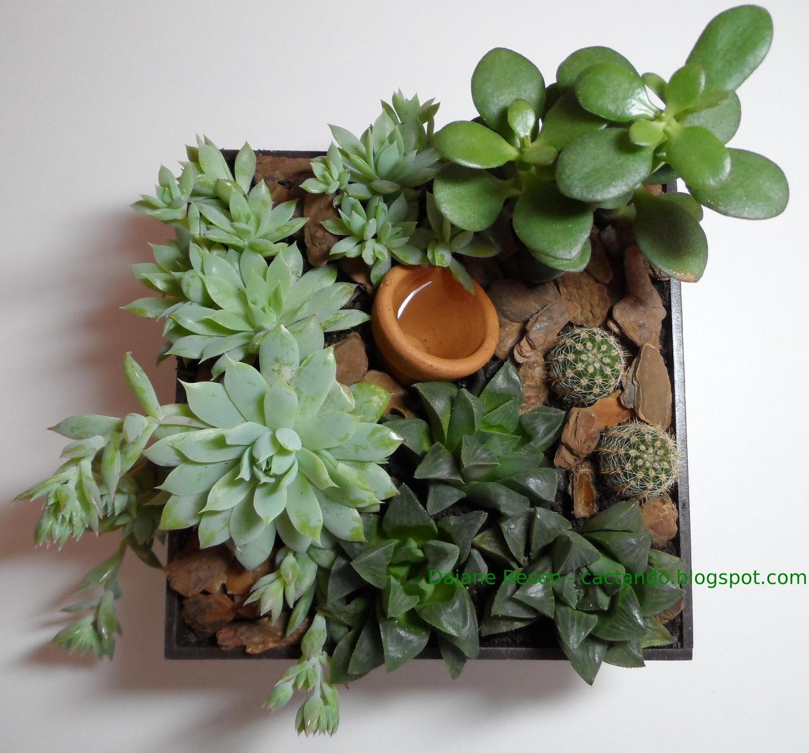 mini jardim apartamento:mini jardim feito por encomenda para a sala de um apartamento de muito