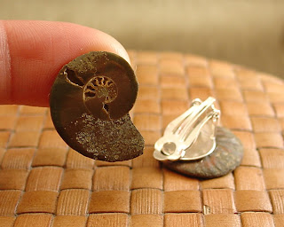 clip on ammonite fossil earrings by shore debris