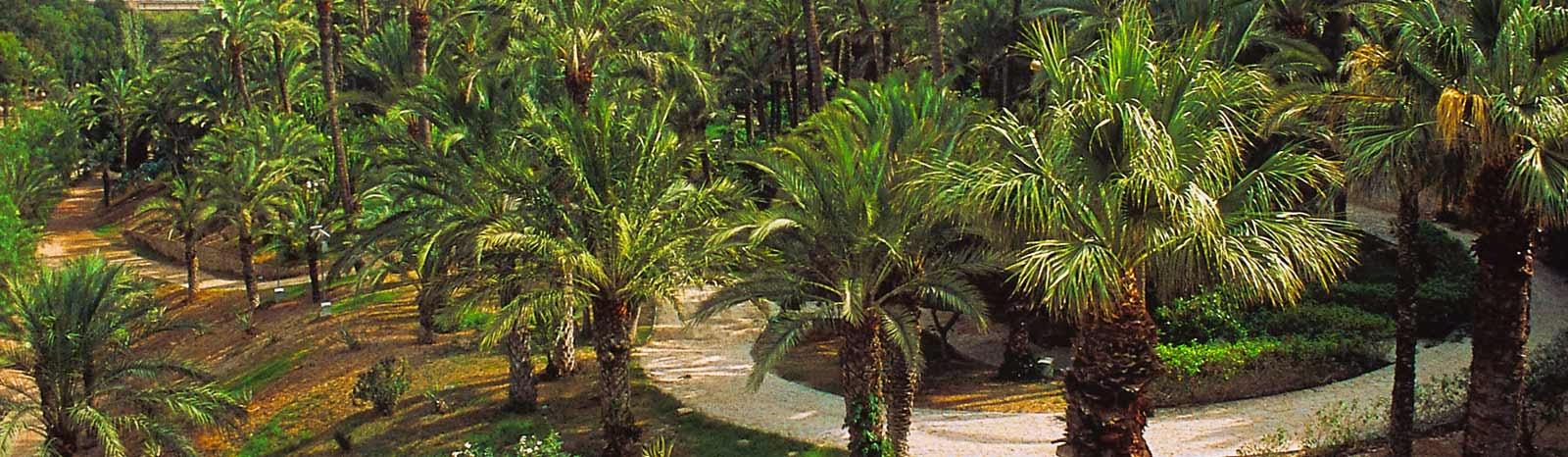 Alicante Province