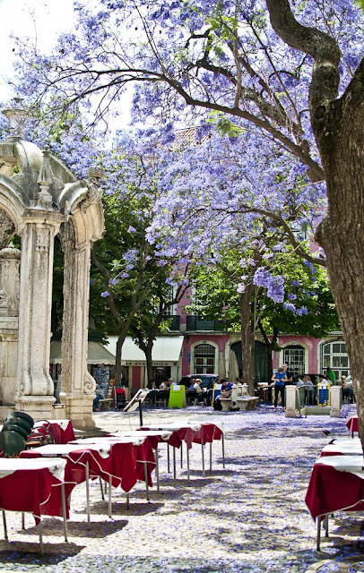 Portugal - Lisboa como nunca a viu Largo do Carmo