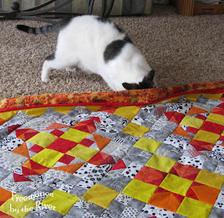 Simon checking out my quilt top