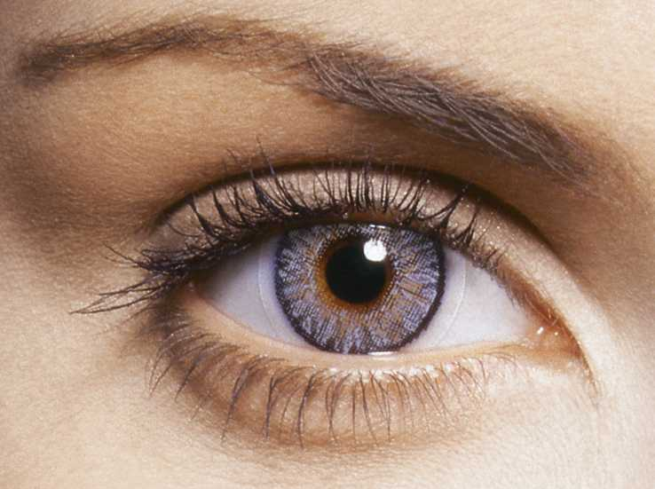 mata adalah jendela dunia