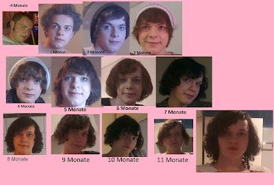12 Monate 1 Jahr Timeline Hormone Estradiol transsexuell transgender nina radtke entwicklung