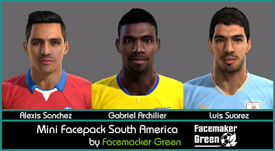 PES 2013 Mini Facepack South America by Facemaker Green