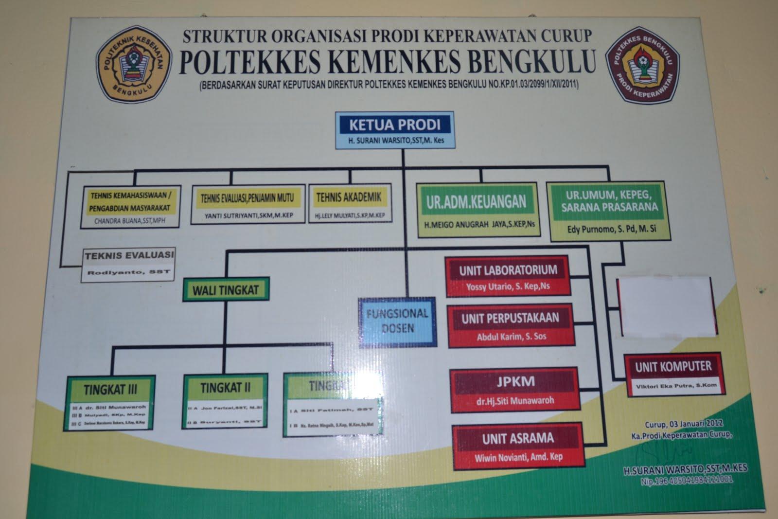 Struktur Organisasi Prodi Keperawatan