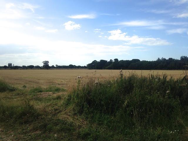 Golden Fields in Potter Heigham, Norfolk