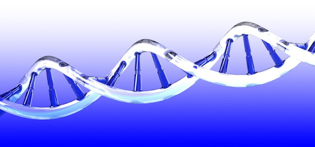 Biological Transistors Created Inside Cells Out of DNA