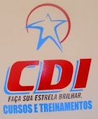 CDI - Cursos Profissionalizantes