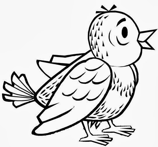 Sparrow Drawing Bird Coloring Pages Worksheet Guide