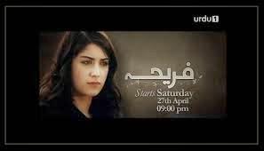 Pakistani Drama Episodes