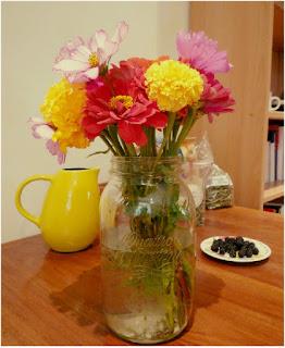 zinnias et oeillets d'un jardin de la Drôme