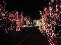 O'Fallon Missouri Celebration of Lights - Road