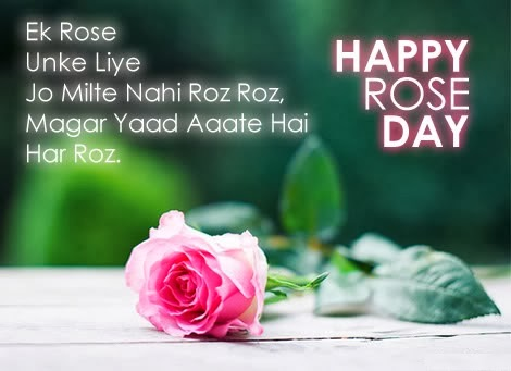 happy rose day 2014 images hindi quotes shayari sayings