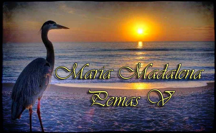 Maria Madalena, V