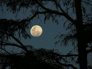 Paisajes con Luna, parte 4