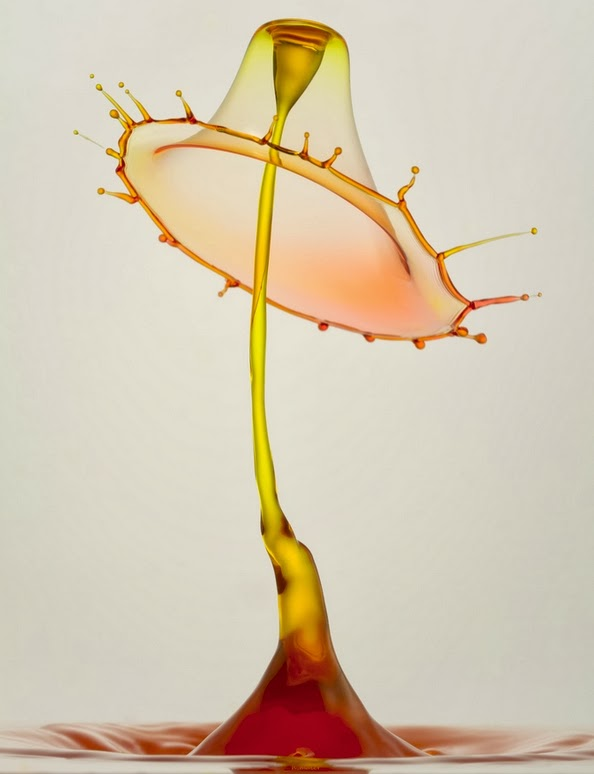 07-German-Photographer-Heinz-Maier-High-Speed-Water-Sculptures-www-designstack-co