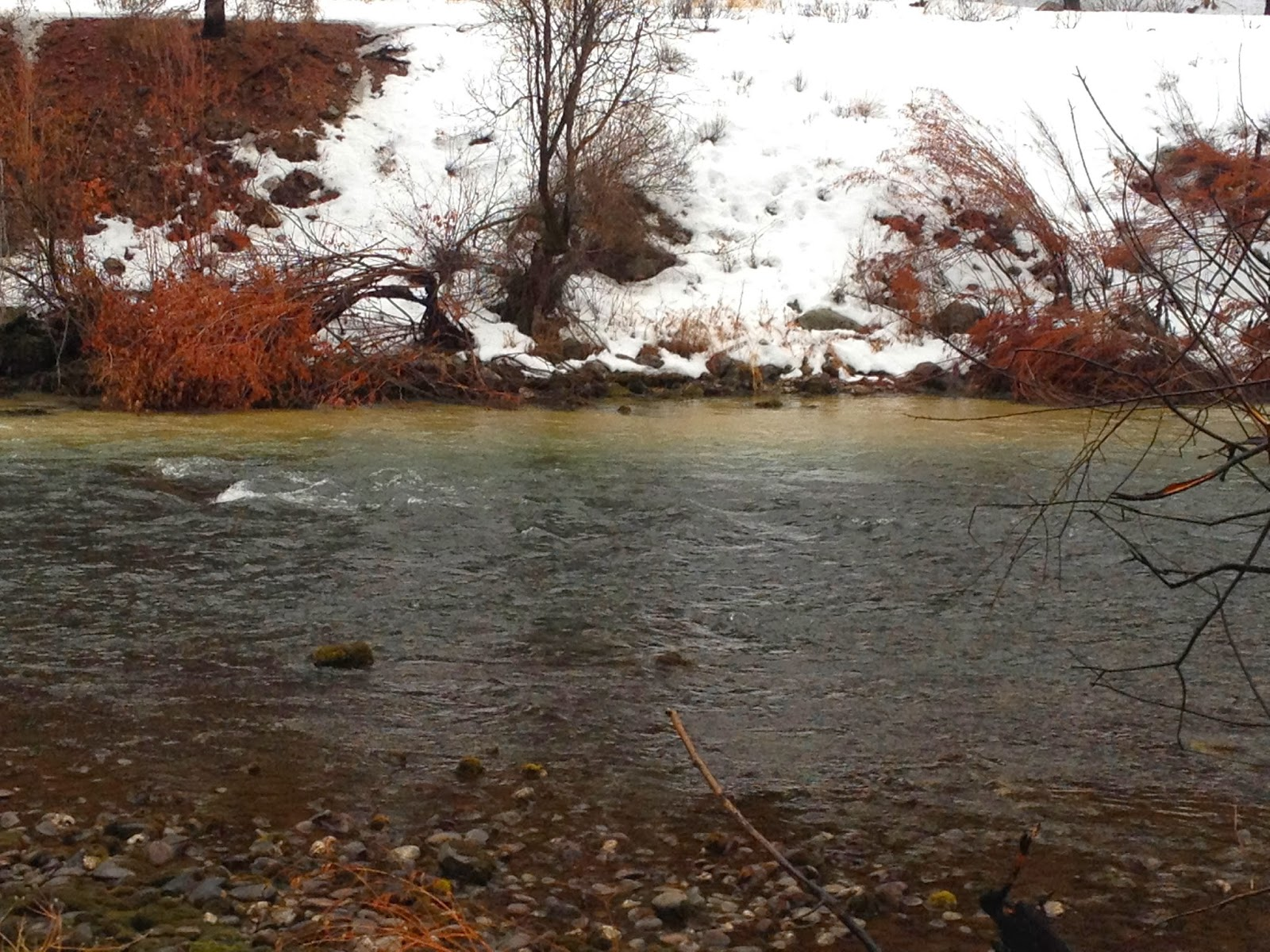 Erik s fly fishing blog blown out for Boise river fishing