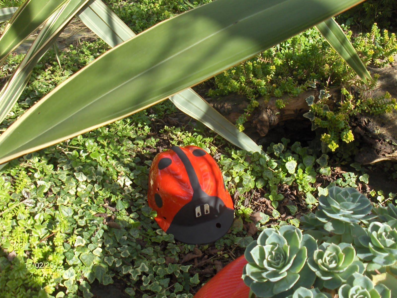 Aprendiz reciclar casco de obra para convertirlo en for Reciclaje para jardin
