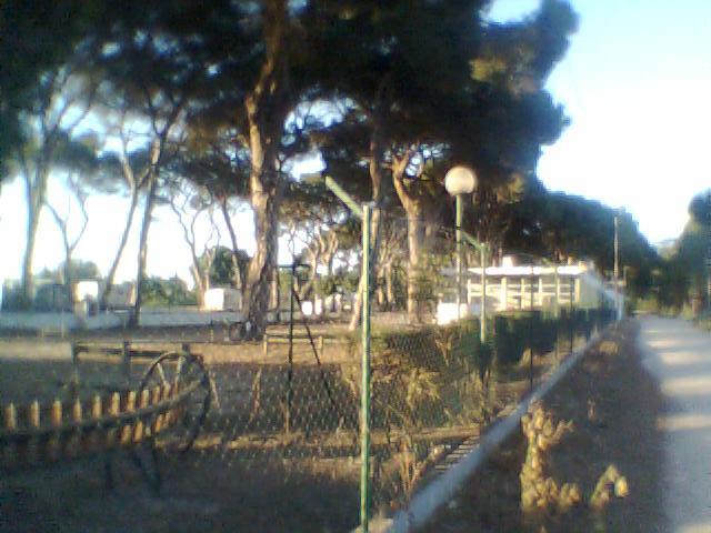 Parque de Campismo de Escaroupim