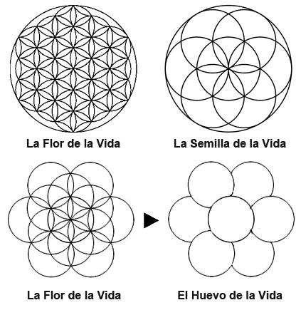 Geometría Sagrada al Descubierto Fl_sl_4
