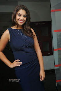 Richa-Gangopadhyay-Stills-at-Bhai-Audio-Launch
