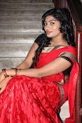 Sowmya glamorous half saree photos-thumbnail-8