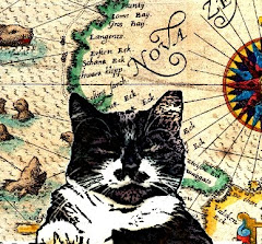 Forscher, Katzen und Kanonen - der Blog
