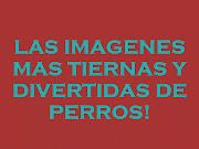 Imagenes Muy Lindas Para Reflexionar 2012 imagenes muy lindas para reflexionar
