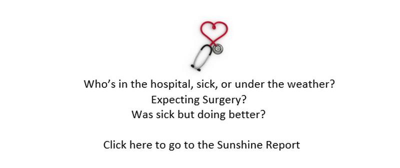 Sunshine Report