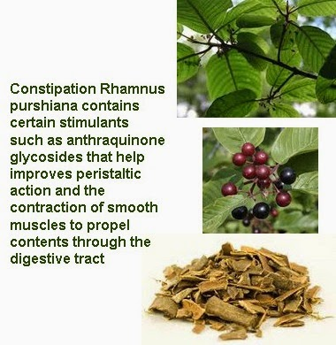 rhamnus purshiana endometriosis treatment