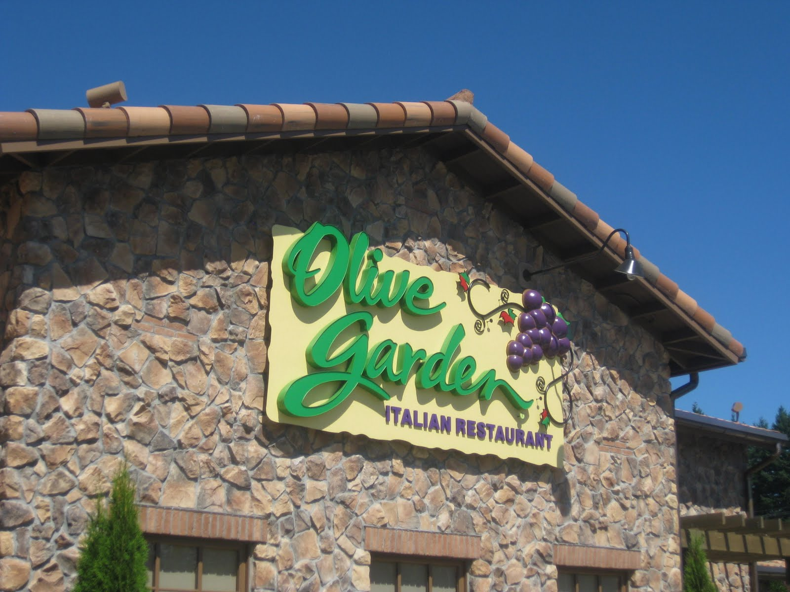 olive garden i know chain restaurants get a lot of hate on being average but i had never been here before so i could care less if it was a chain - Olive Garden Bellingham