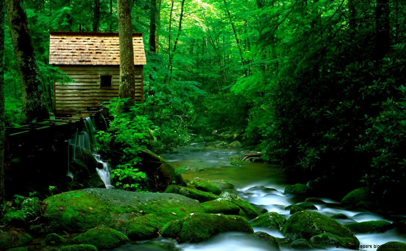 natural scenes wallpapers | all hd wallpapers