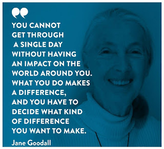 "You cannot get through a single day without having an impact on the world around you. What you do makes a difference, and you have to decide what kind of difference you want to make. "" Jane Goodall """