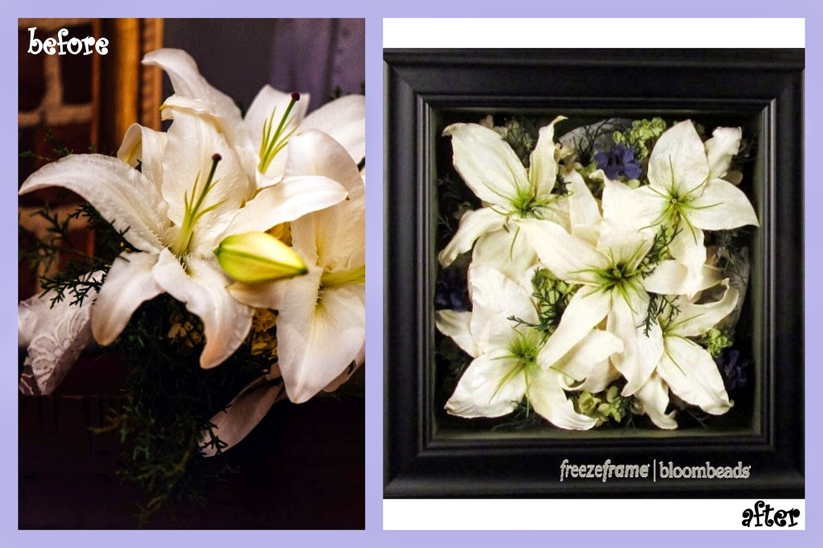 Frame Your Wedding Flowers Preserved Wedding Flowers Before And After