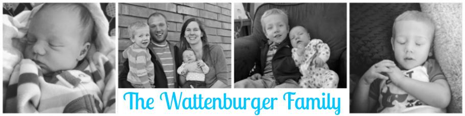 Wattenburgers