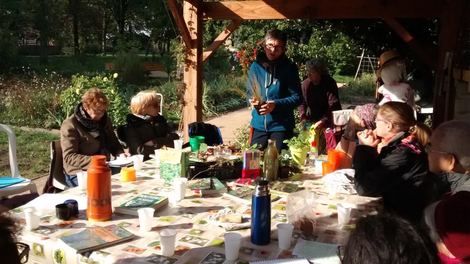 Jardin sur cour octobre 2015 for Jardin octobre 2015