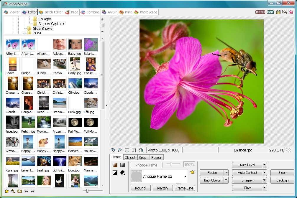 WatFile.com Download Free Download PhotoScape 2014 for Windows - Free Download • All programs