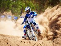 2014 Yamaha YZ450F | Yamaha pictures 1