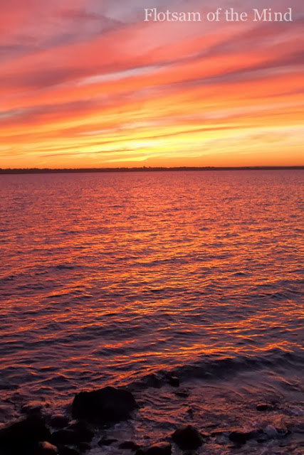 Red Sunset on Narragansett Bay - Flotsam of the Mind