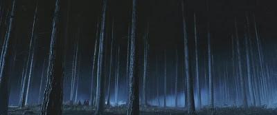 Conteúdo OFB: Floresta Proibida | Ordem da Fênix Brasileira