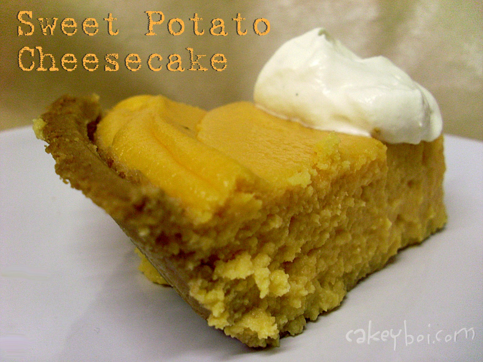 Cakeyboi: Sweet Potato Cheesecake