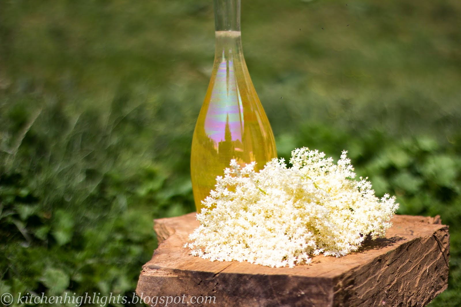 Fragrant and refreshing, elderflower cordial is excellent for summer
