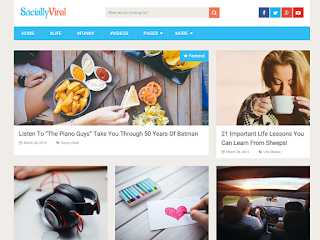 wordpress professional themes : SociallyViral Theme