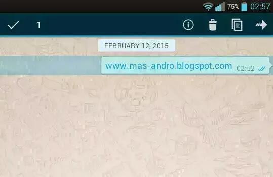 cara cek status pesan whatsapp